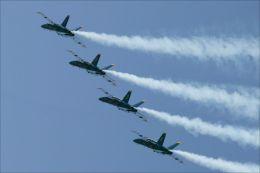 Blue angels fly over Fleet Week