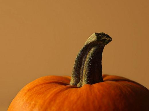 Cheerful Pumpkin