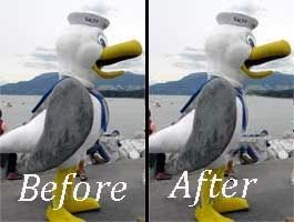 Before and After photo showing how to remove pounds through photo editing .