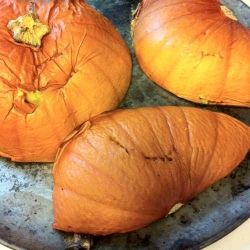 Baked Pumpkins  On a Tray