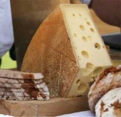Asiago Cheese Bread Recipes