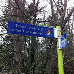 A Stroll Along North Vancouver's  Trans Canada Trail