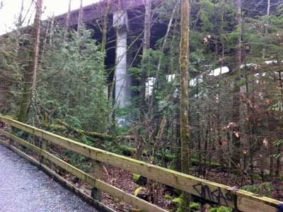 Mosquito Creek Trail Approaching the Overpass