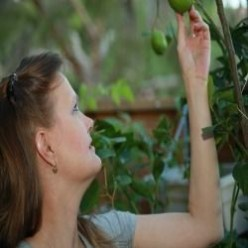 How To Grow A Lemon Tree Anywhere