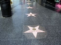 Hollywood Walk of Fame - We have so much fun looking for the names of our favorite actors!