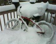 The porch bike.