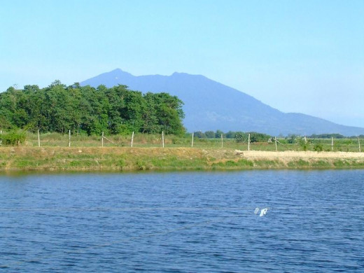 Another View of a Tilapia Farm Pond, Mabalacat, Pampanga, Philippines