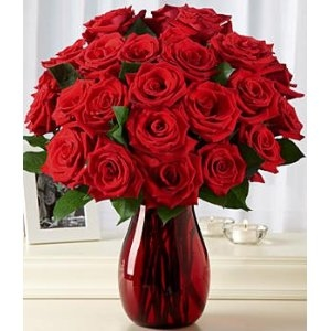 One Dozen Red Roses + 12 FREE.
