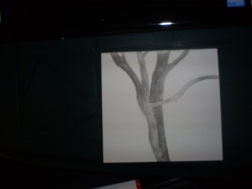 In this step I completed shading in the tree.