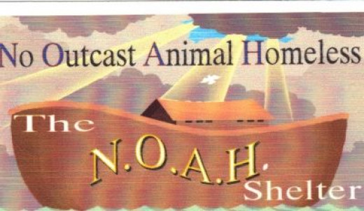 All proceeds from this site go to the N.O.A.H. Rescue Shelter