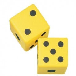 Educational Dice Games for Home & School ~ Including You Blew It Instructions