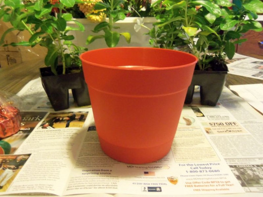 First I selected a clean red pot.