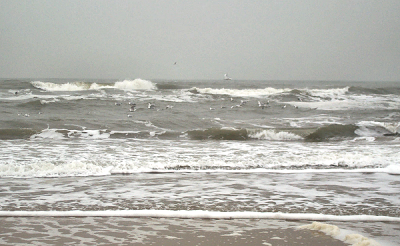 The North Sea at Zandvoort