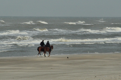 Horseback riding at the Beach