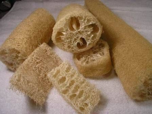 Cut sponges into different shapes and sizes when they are wet if you are not cutting a flattened sponge.(Photo google images by David Fisher)