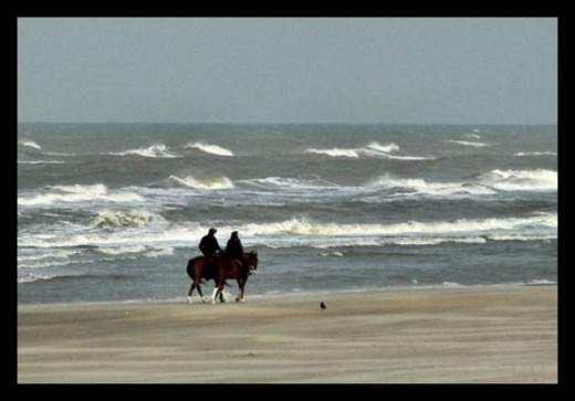 horse riding at the beach
