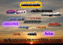Domain names and registration