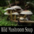 * Three Wild Mushroom Soup Recipes
