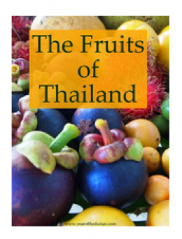 FREE guidebook to more delicious Thai fruits. Courtesy of Lindsay Gasik
