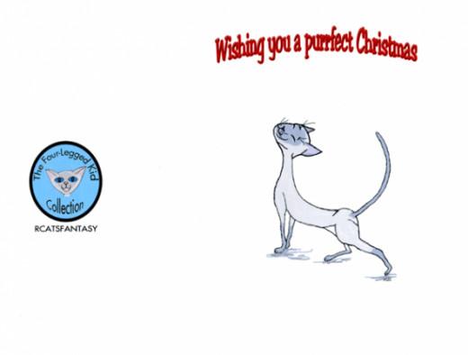 Christmas card outside