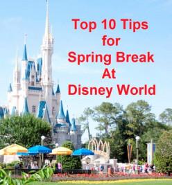 Top 10 Tips for Spring Break at Disney World