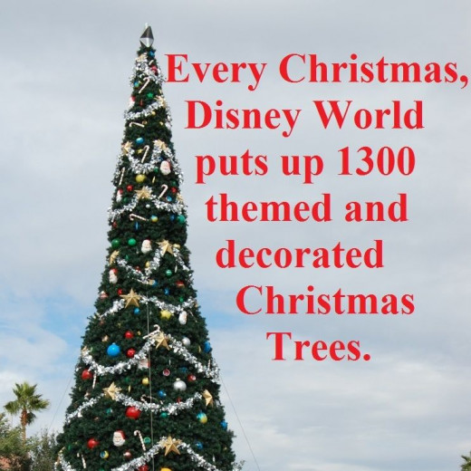 Disney World Christmas Trees