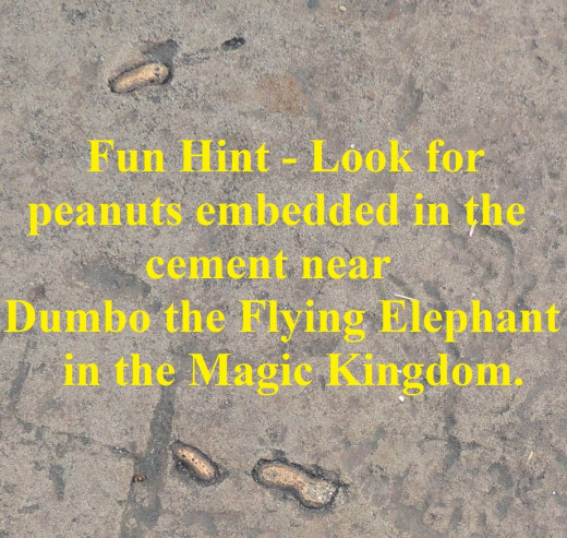 These peanuts look like they were dropped and pressed into the ground by elephants.  Such a cute detail!