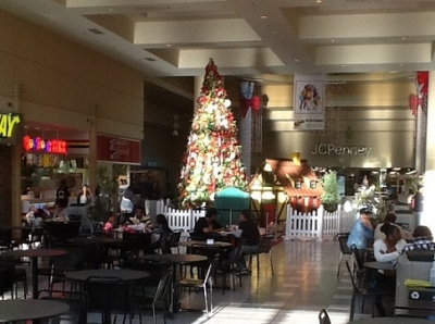 November 12th, 2012.  Veterans Day. The Carson Mall has fully decked its halls. Sigh.