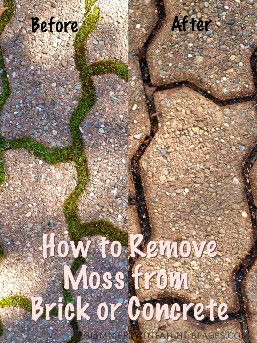 This is an easy way to remove moss from brick and concrete.