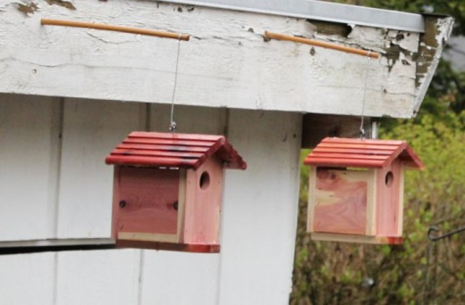 Chickadee Birdhouses