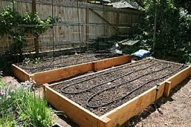 raised bed garden jpg 2