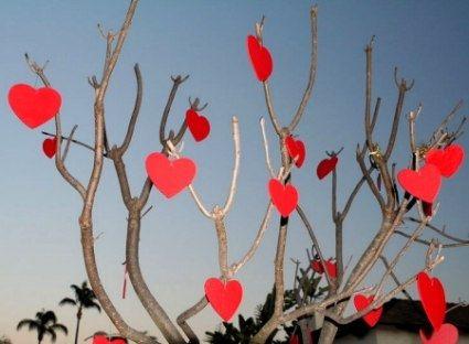 A Valentine Tree