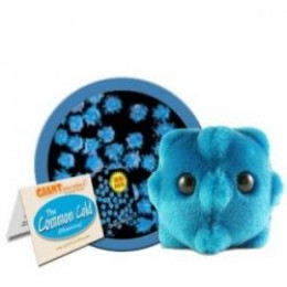 Use giant microbes to teach hand washing to children