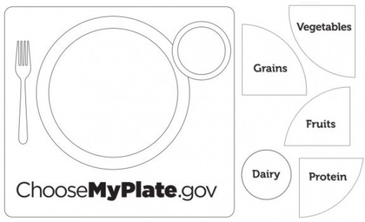 blank plate diagram  blank  free engine image for user