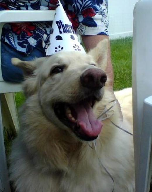 Pharaoh at the birthday party!
