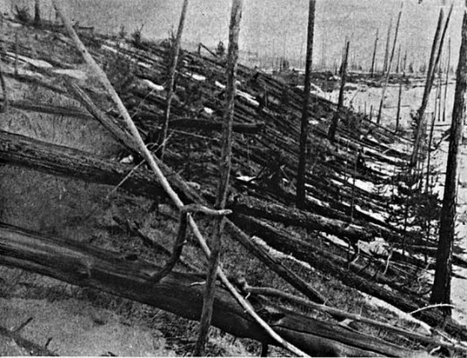 You can see how the Tunguska event changed this once green and beautiful forest.  Photo Credit:  Wiki