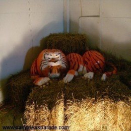 Another giant pumpkin sculpture is the Pumpkin Tiger.  What awesome pumpkin designs there are, and the dedicated fans who love creating pumpkin decorations who work for days to create something truly unique and marvelous.