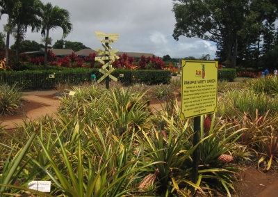 Dole Plantation Garden