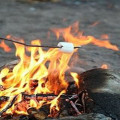 How To Roast Marshmallows Summer Fun For Kids