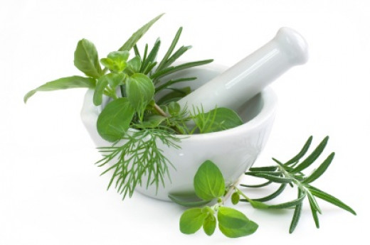 Healing herbs are a food source with little to no side effects