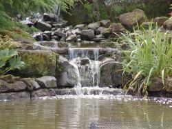Waterfall in pond