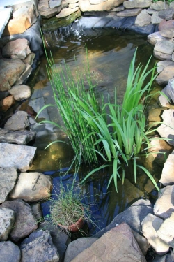 Pond made from a preformed pond liner