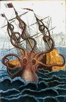 The Colossal Octopus by Pierre Dénys de Montfort