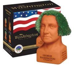 George Washington Chia Pet