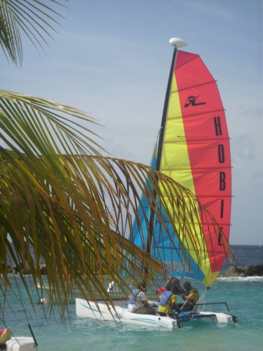 You can take a free ride on a Hobie Craft.  They will take you out beyond the breaker wall and back.