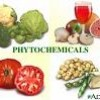 List of Phytochemicals That Fight Cancer