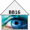 Big Brother Live Feed & News