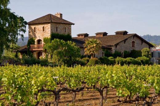 Famous photo of Napa Winery
