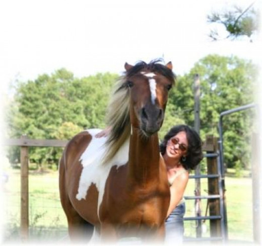 Equine Ecstasy: How Happy Is YOUR Horse?