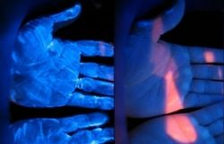 Fluorescent Powder and Lotion Supported by CDC